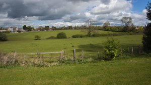 Sketchley Fields protected from development as inquiry dismisses appeal